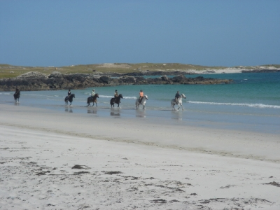 The Point Pony Trekking & Horse Riding