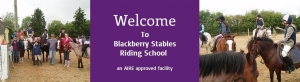 Having Fun at Blackberry Stables